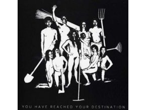 ASIAN WOMEN ON THE TELEPHONE - You Have Reached Your Destination (LP)