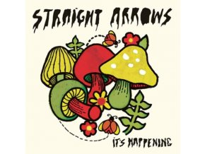 STRAIGHT ARROWS - ItS Happening (LP)