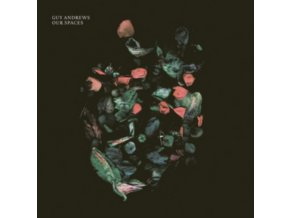 GUY ANDREWS - Our Spaces (LP)