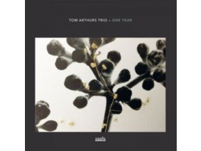 TOM ARTHURS TRIO - One Year (LP)