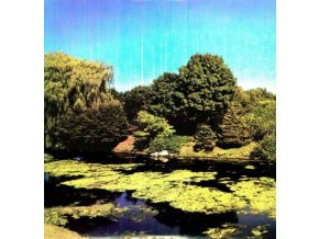 SHELLAC - Terraform (LP)