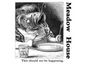 MEADOW HOUSE - This Should Not Be Happening (LP)
