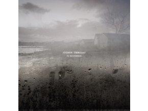 JOSHUA TRINIDAD - In November (LP)