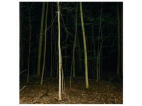 EXPRESS RISING - Fixed Rope II (LP)