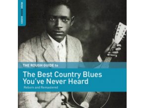 VARIOUS ARTISTS - The Rough Guide To The Best Country Blues Youve Never Heard (LP)