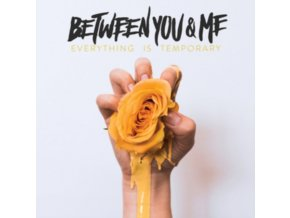 BETWEEN YOU & ME - Everything Is Temporary (LP)