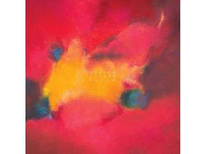 ODDZOO - Future Flesh (LP)