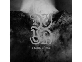 COMMON EIDER / KING EIDER - A Wound Of Body (LP)