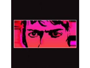 DELICATE STEVE - Till I Burn Up (LP)