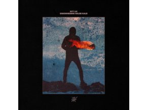 NYT LIV - Ensomhedens Kolde Kald (LP)
