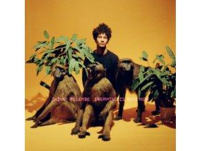 SKINNY PELEMBE - Dreaming Is Dead Now (LP)