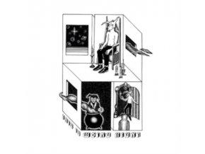 WEIRD NIGHT - This Is Weird Night (LP)