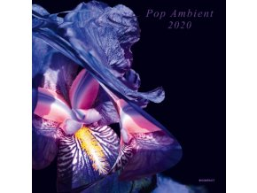 VARIOUS ARTISTS - Pop Ambient 2020 (LP)
