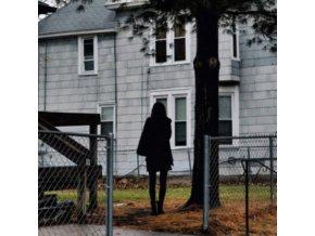 TALLEST MAN ON EARTH - Dark Bird Is Home (LP)