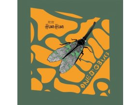"HUAN HUAN - One Big Bug (12"" Vinyl)"