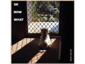 GO GET MUM - Ok Now What (LP)
