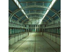 FIELDHEAD - WeVe All Been Swimming (LP)