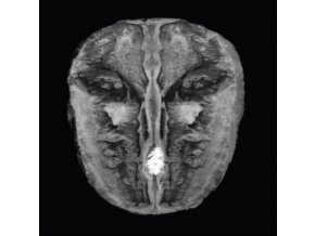 HANS JOACHIM IRMLER & CARL OESTERHELT & MODERN STRING QUARTETT - Die Gesange Des Maldoror (LP)