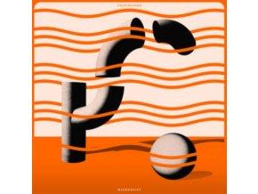 HOOKWORMS - Microshift (LP)