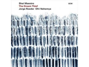 SHAI MAESTRO / JORGE ROEDER / OFRI NEHEMYA - The Dream Thief (LP)