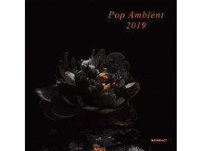 VARIOUS ARTISTS - Pop Ambient 2019 (LP)