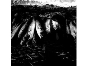 SUZIE STAPLETON - We Are The Plague (LP)