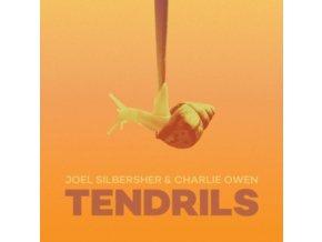 JOEL SILBERSHER & CHARLIE OWEN - Tendrils (LP)