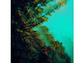 POLYMOON - Caterpillars Of Creation (LP)