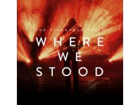 PINEAPPLE THIEF - Where We Stood (LP)