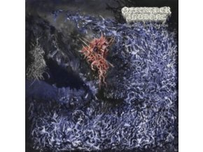 OF FEATHER AND BONE - Sulfuric Disintegration (LP)