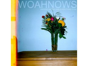 WOAHNOWS - Understanding And Everything Else (LP)