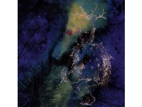 BARDO POND - Under The Pines (LP)
