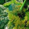 "UH - Seasick In Salts EP (12"" Vinyl)"