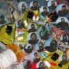 NICK HAKIM - Will This Make Me Good (LP)