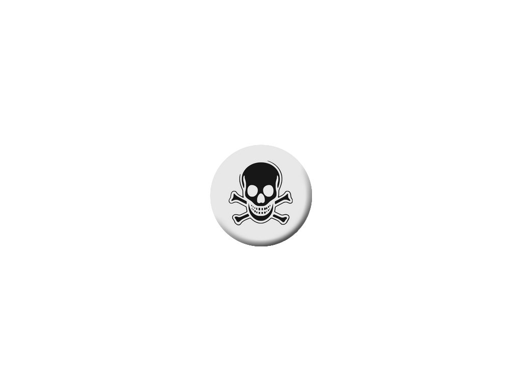 Placka Skull 25mm (033)