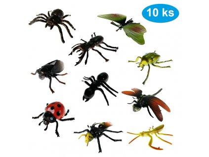 hmyz1