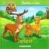 Bydlím v lese 1 - Jelen