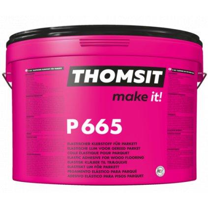 THOMSIT P665