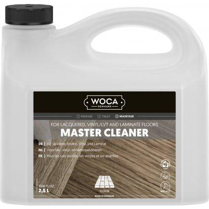 master cleaner 2,5l