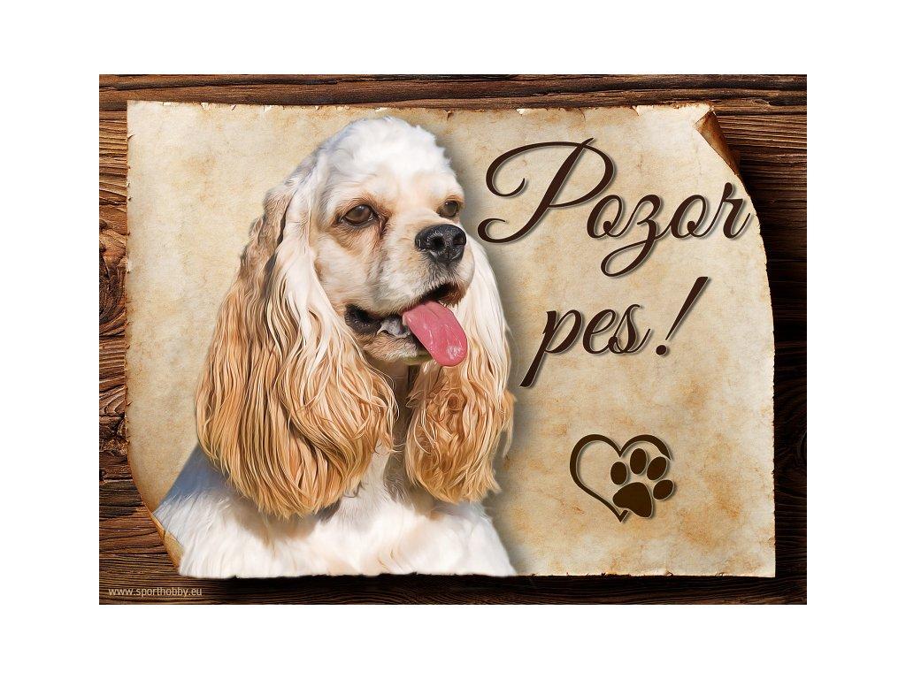 Cedulka Americký kokršpaněl - Pozor pes CP998 - Cedulky sport hobby fca1bb1140