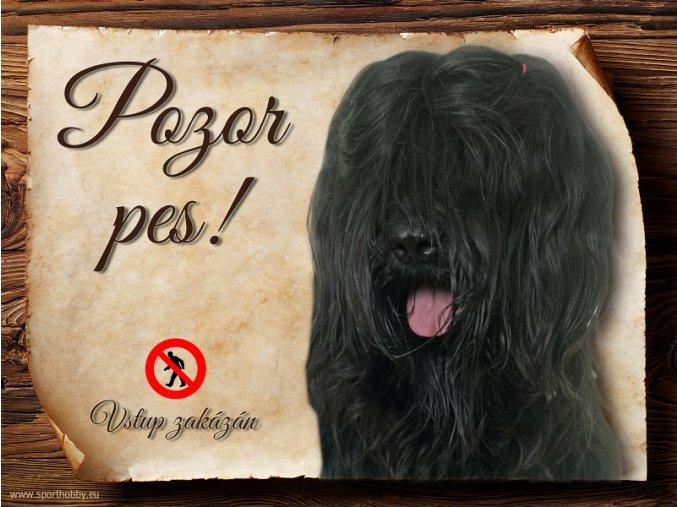 Cedulka Briard - Pozor pes zákaz/CP413