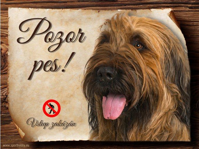 Cedulka Briard III - Pozor pes zákaz/CP425