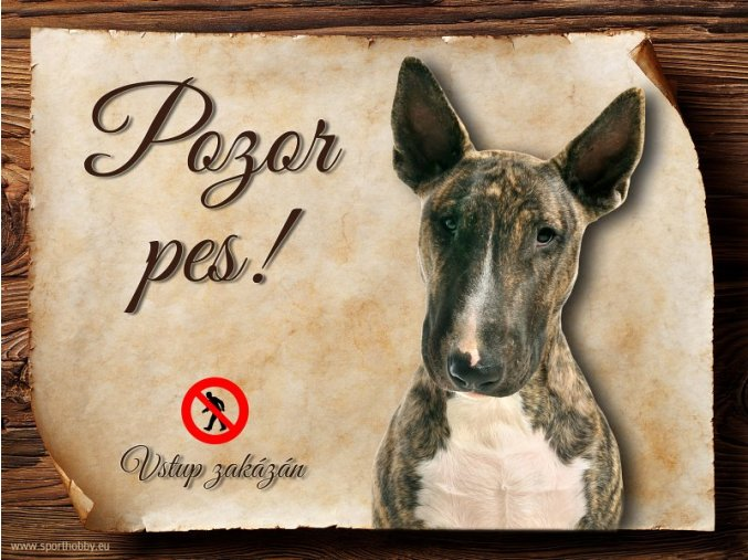 Cedulka Bullterier - Pozor pes zákaz/CP347