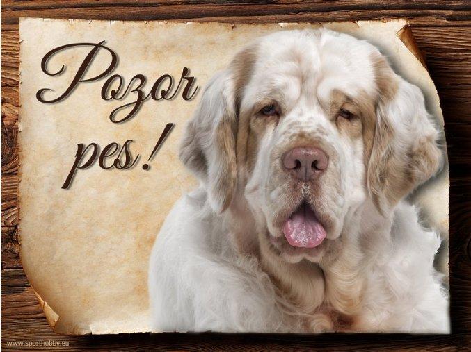 Cedulka Clumber španěl - Pozor pes/CP302