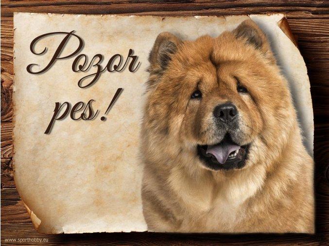 Cedulka Čau čau - Pozor pes/CP282