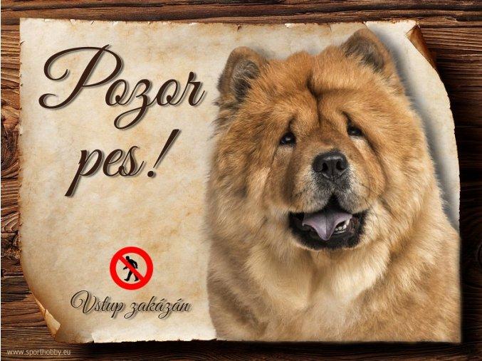 Cedulka Čau čau - Pozor pes zákaz/CP285