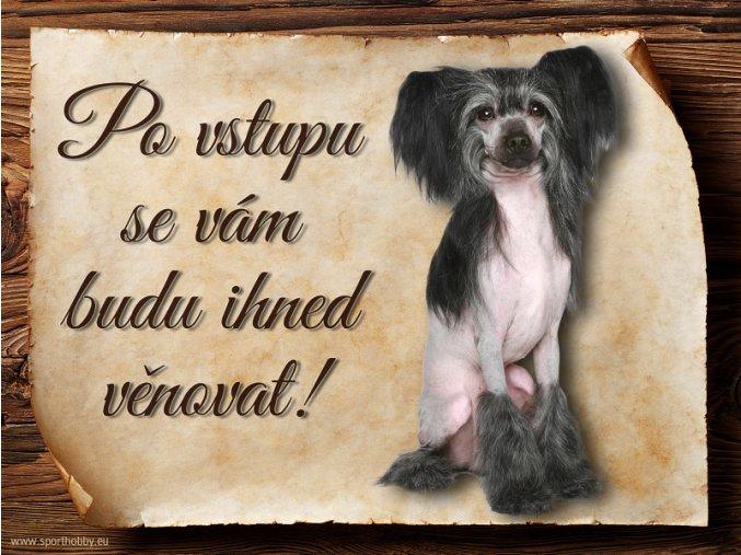Cedulka Čínský chocholatý pes - Po vstupu .../CP634
