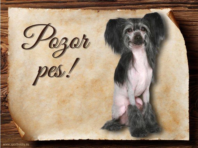 Cedulka Čínský chocholatý pes - Pozor pes/CP631
