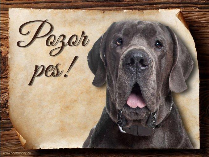 Cedulka Dánská doga - Pozor pes/CP258