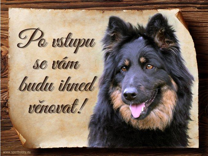 Cedulka Chodský pes - Po vstupu .../CP536